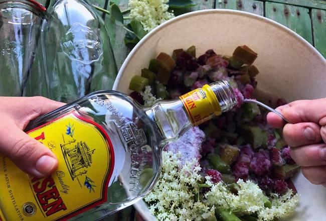 reb gin1 650